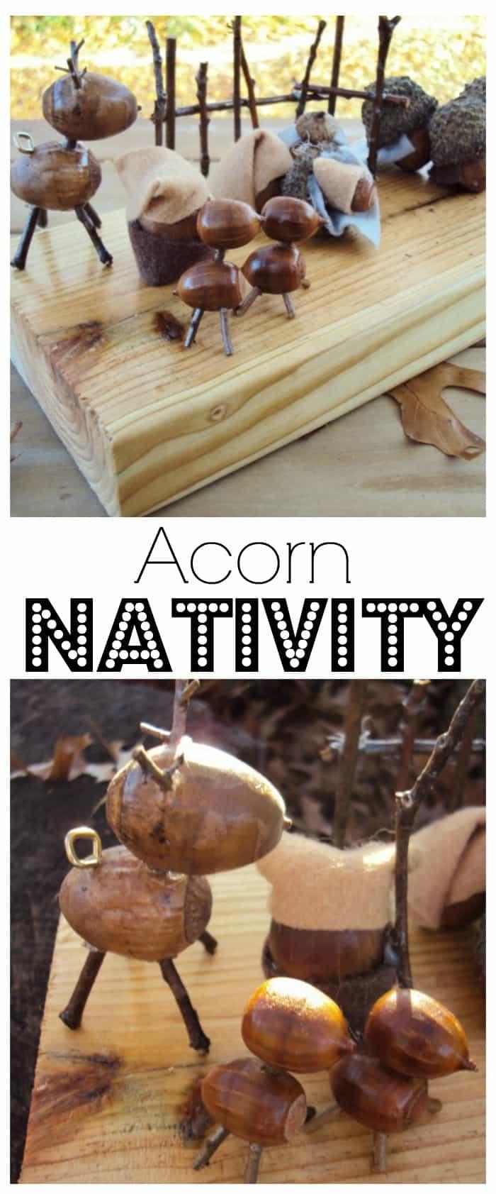 acorn-nativity