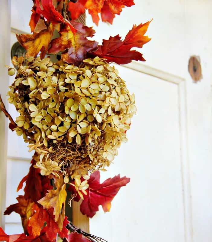 budget-fall-decorating-ideas-hydrangea