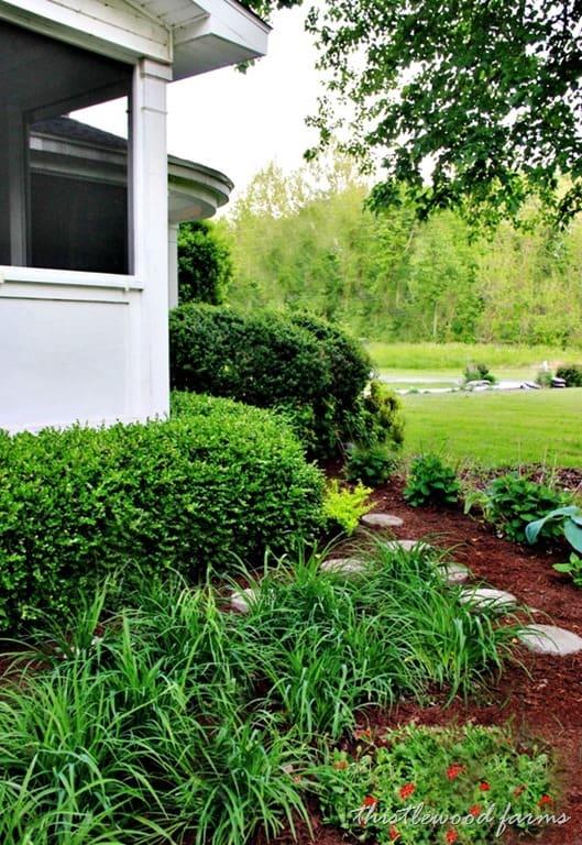 garden-day-lilies.jpg