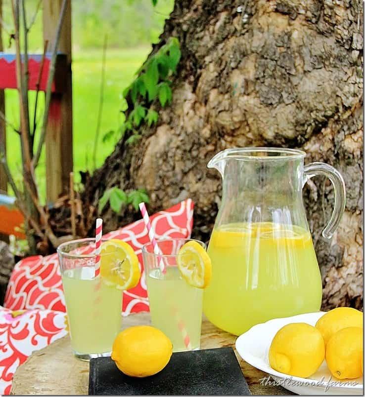 lemonade-pitcher-outdoor-decorating