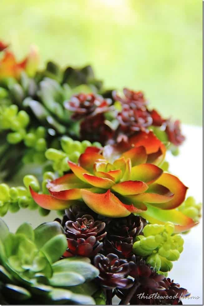 how to make a faux succulent wreath (1)