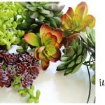 make-a-faux-succulent-wreath