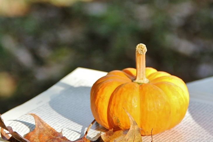 Pumpkins and Communication