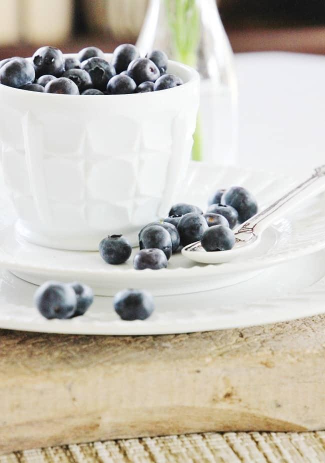blueberries in spring