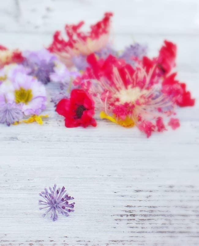 make a flower monogram