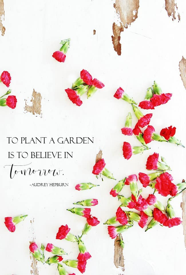 to plant a garden is to believe in tomorrow